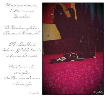 Die Trauer des Verlustes stürzt mich in eine tiefe Verzweiflung...(+Gedicht)