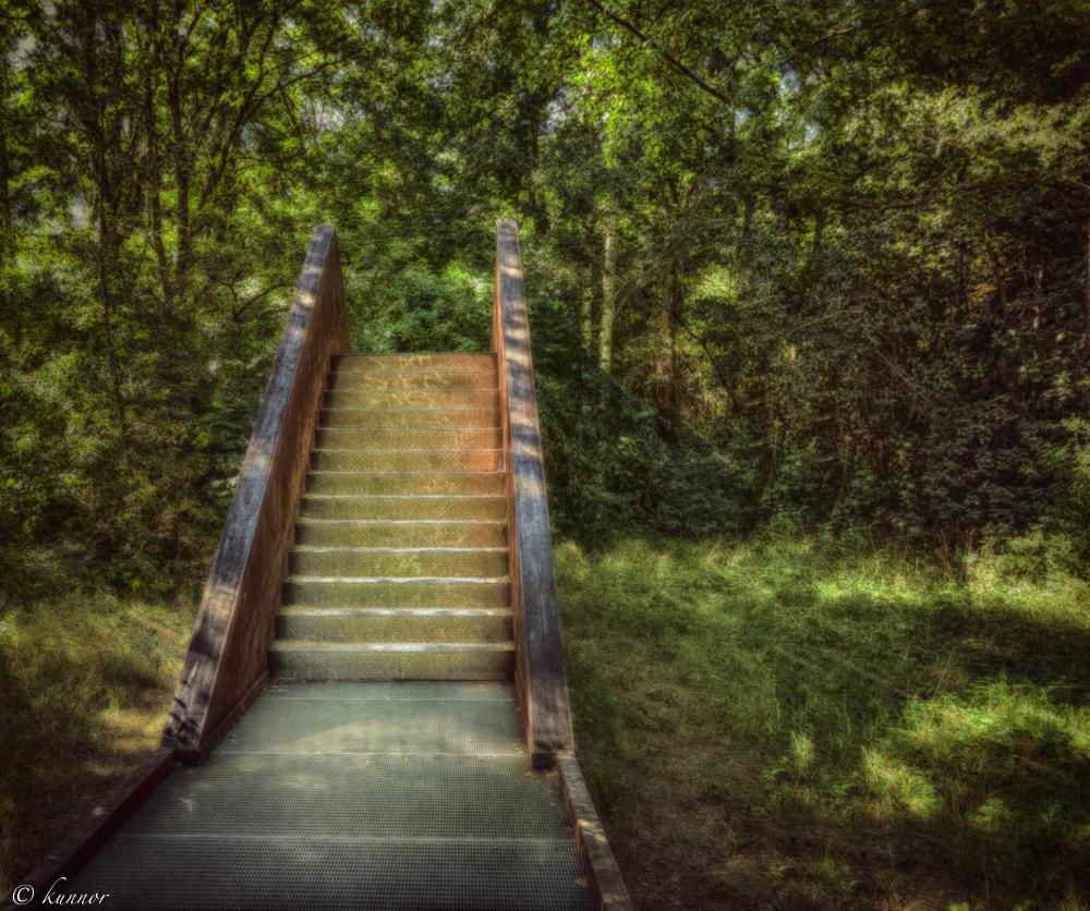 die Treppe zurück.....