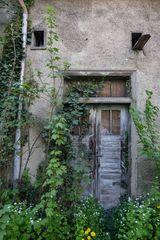 die Tür zum Hof...
