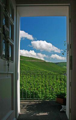 die Tür zum Wein