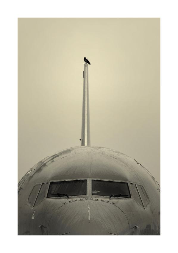 Die ultimative Vogelperspektive ...