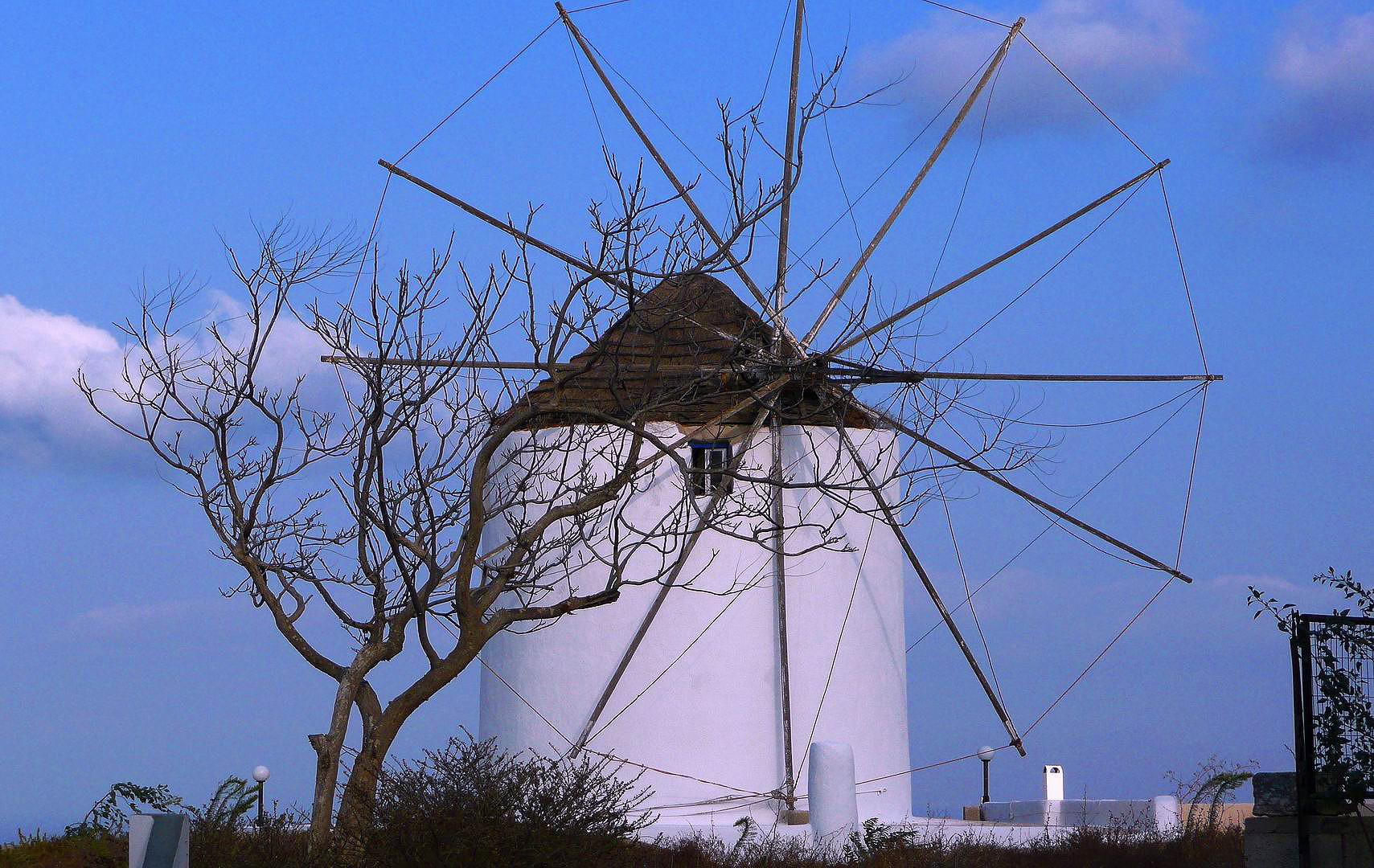 Die unheimliche Mühle