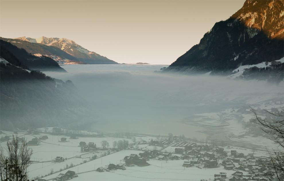 ... die unter dem Nebel leben