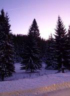 Die violette Nacht ...