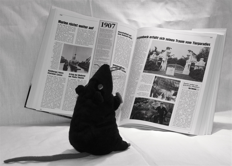 Die Vorleserin / Leseratte