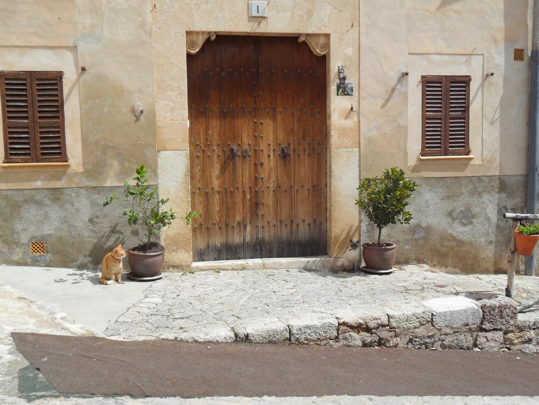 Die Wachkatzen von Valdemossa