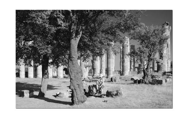 Die Wächterin der Säulenstümpfe