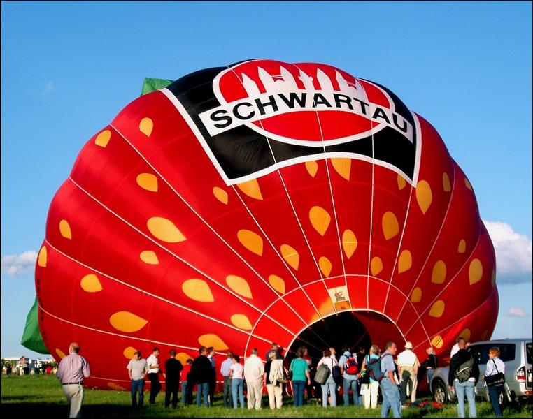 Die wahrscheinlich größte Erdbeere der Welt- Teil 2