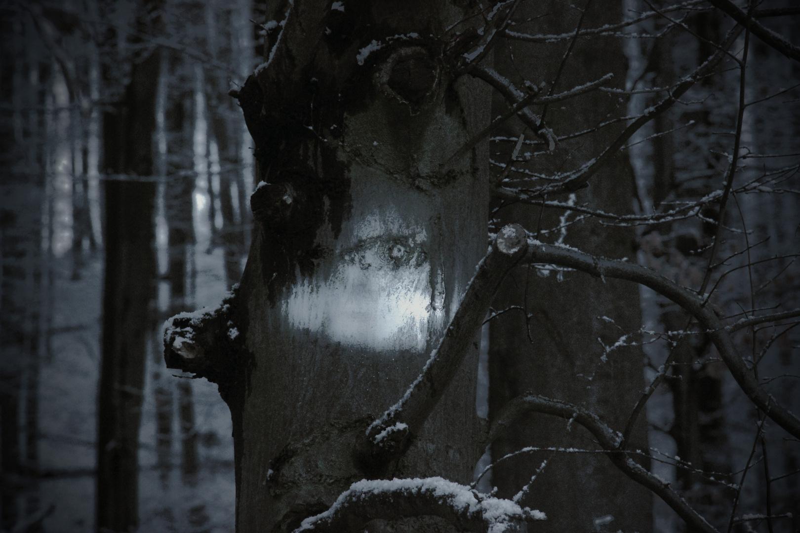 Die Waldgeister