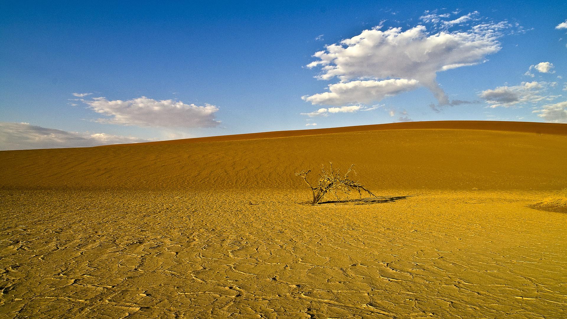 Die Weite der Namib