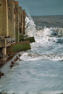 Die Welle 1