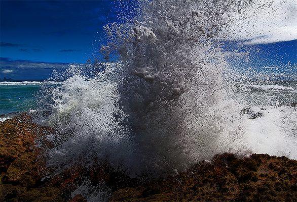 ~ Die Welle ~