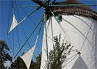 die Windmühle