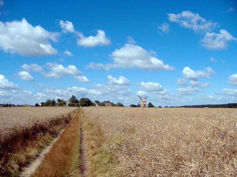Die Windmühle in weiter ferne