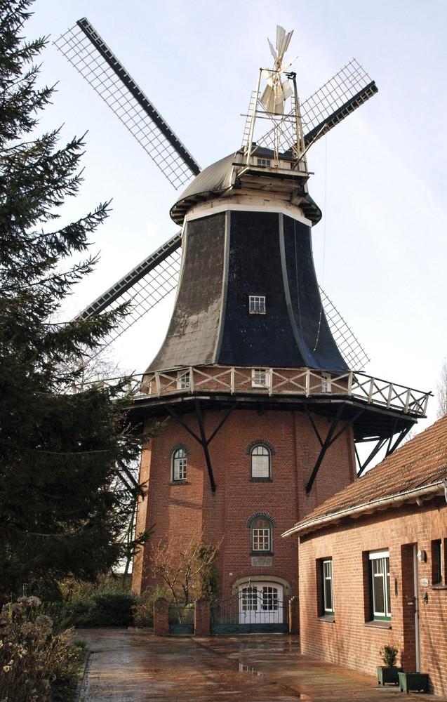 Die Windmühle Möhlenwarf