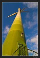 Die Windräder vom Schelk #2