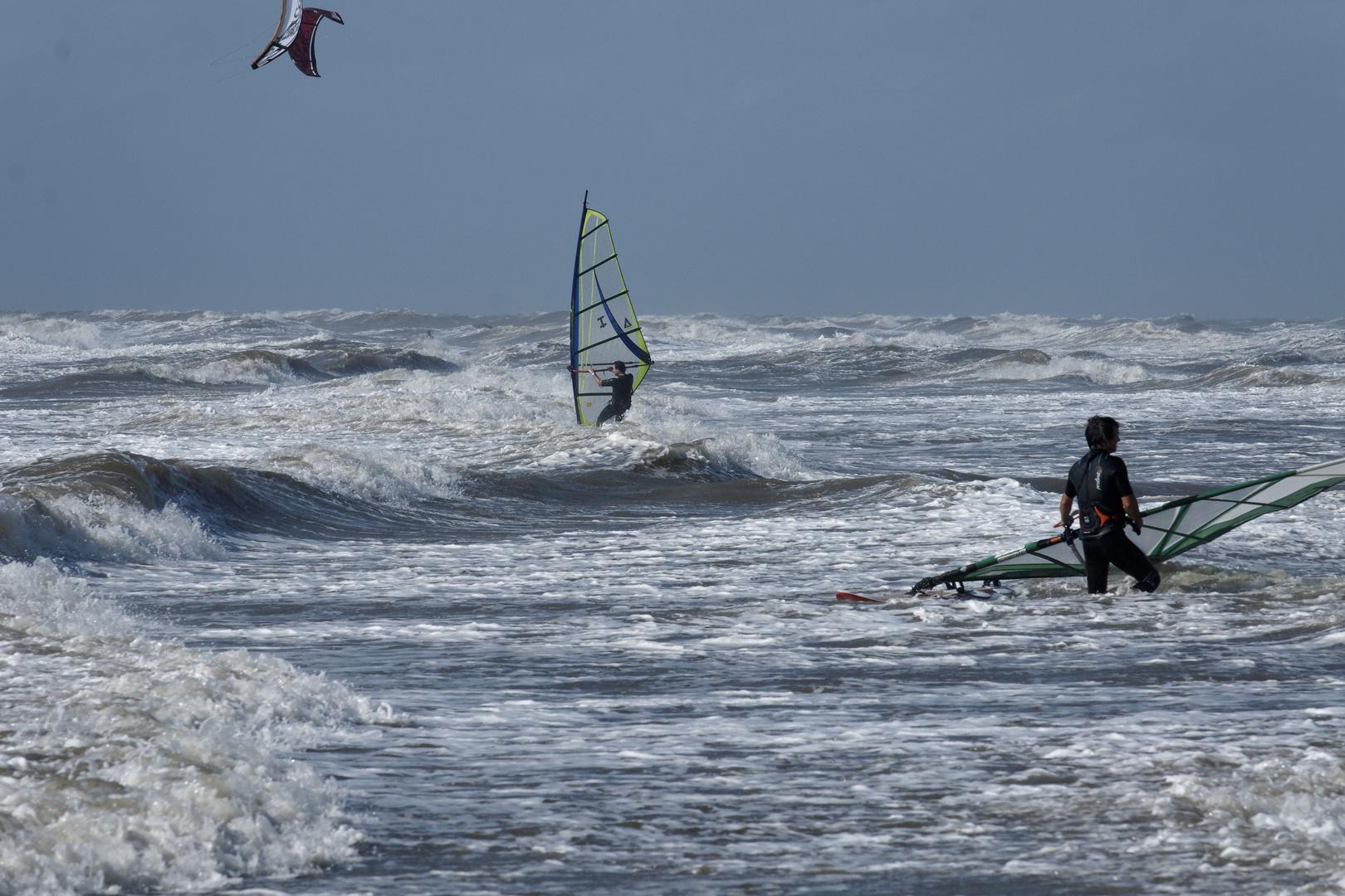 Die Windsurfer