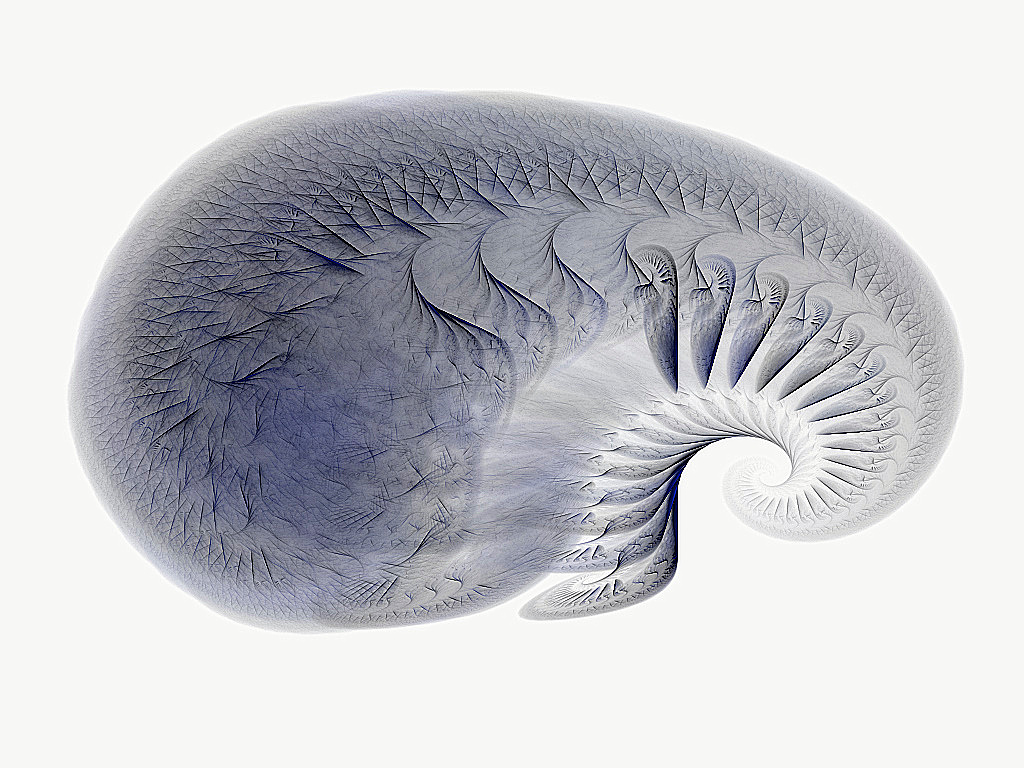 Die Windungen im Gehirn