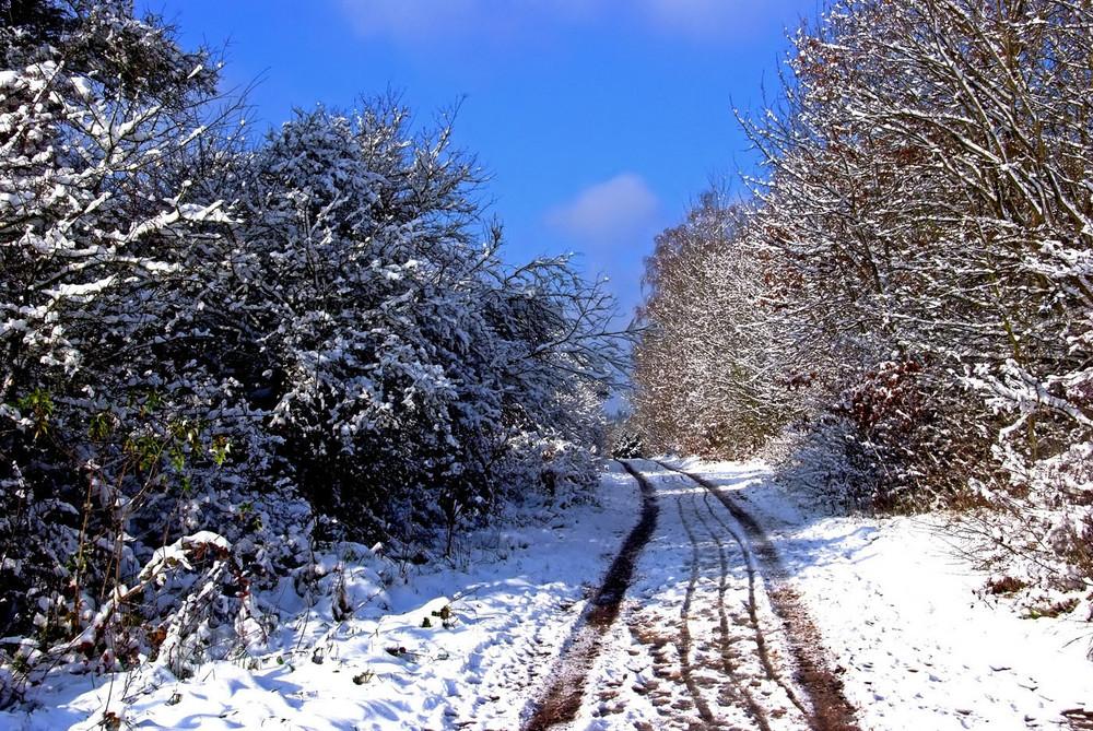 Die Winterfreuden ...