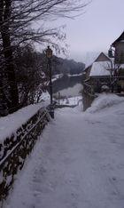 Die Winterreise... (8)