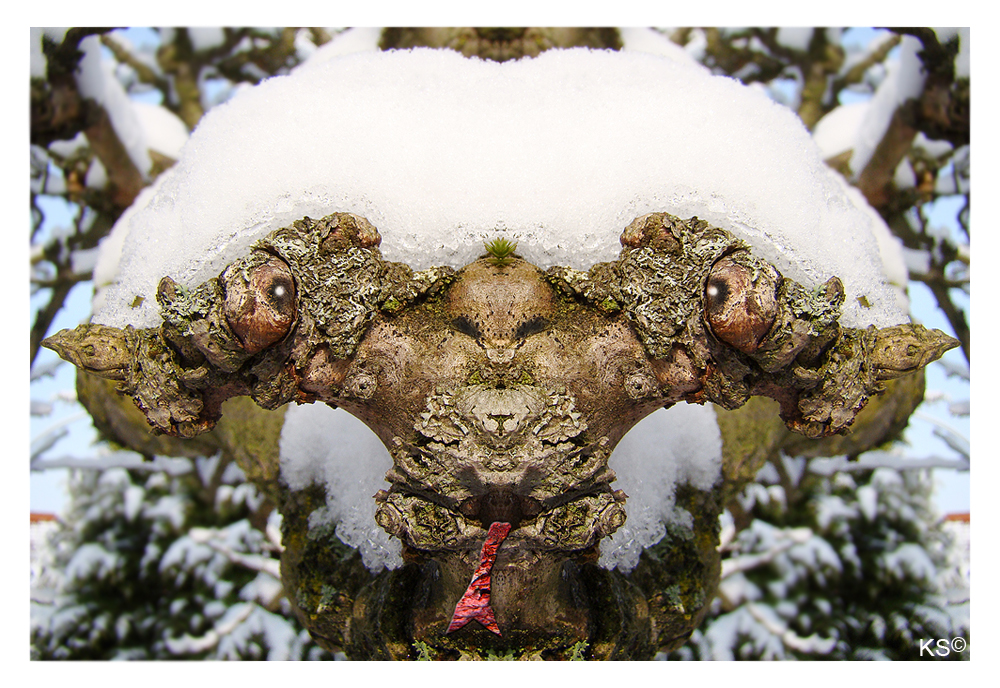 Die Winterschlange