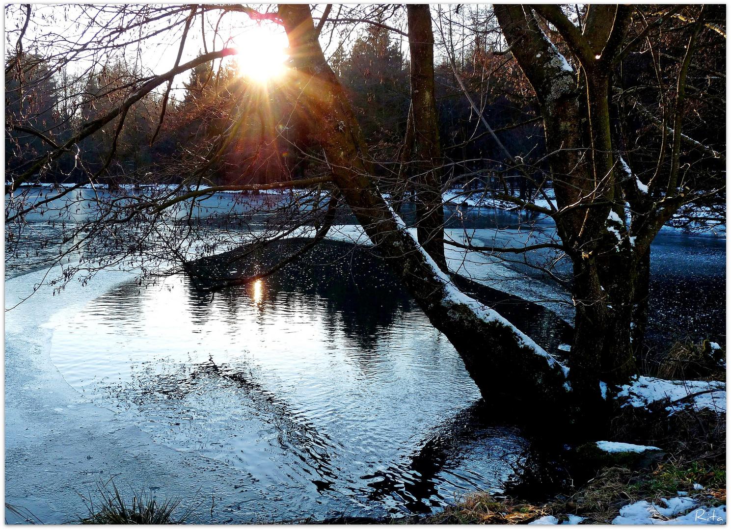 die Winterstille (2)...