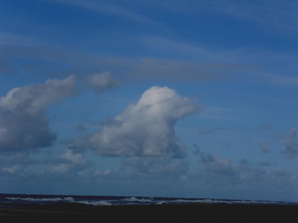 Die Wolke Knut / oder die Wolke Flocke ?