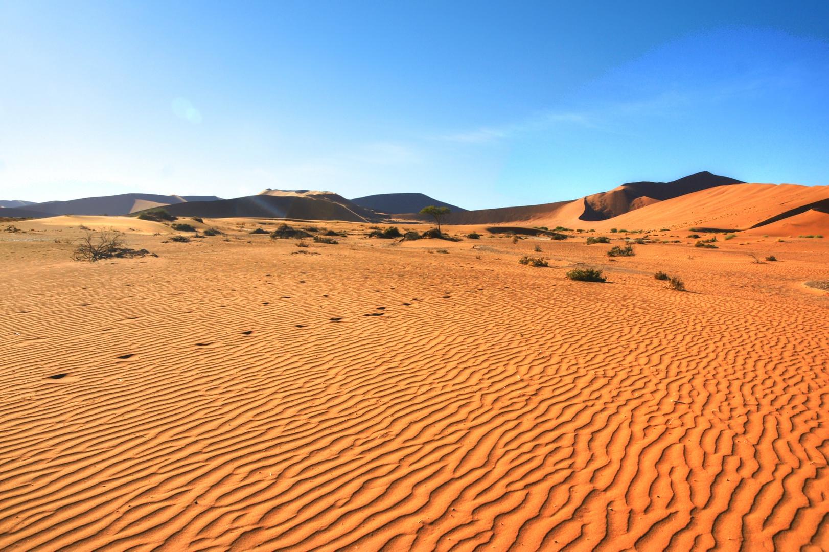 Die Wüste in Namibia bei Sossovlei