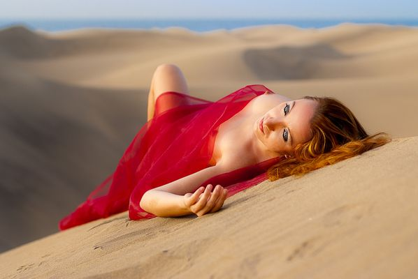 ... die Wüste lebt ...