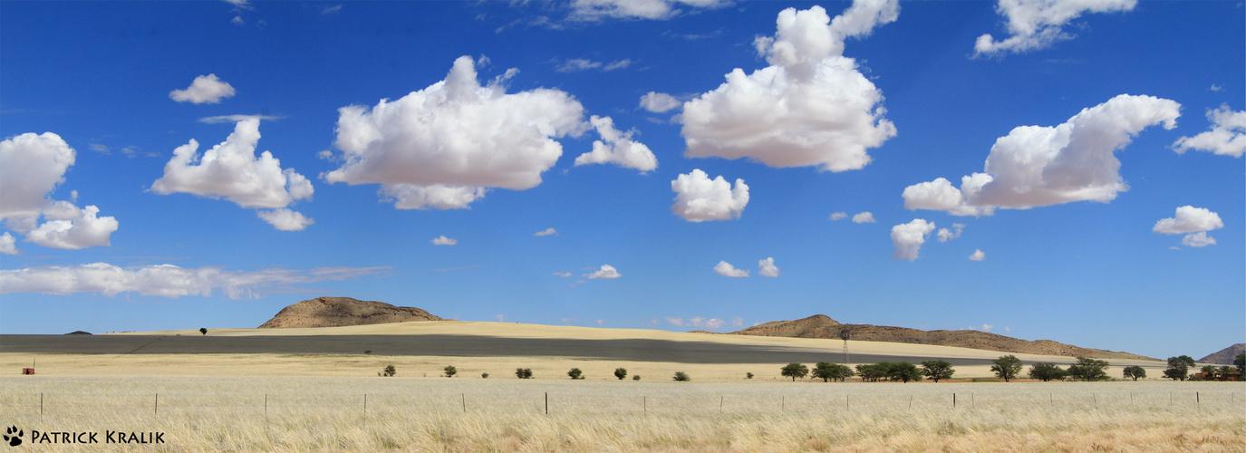 Die Wüste lebt.....