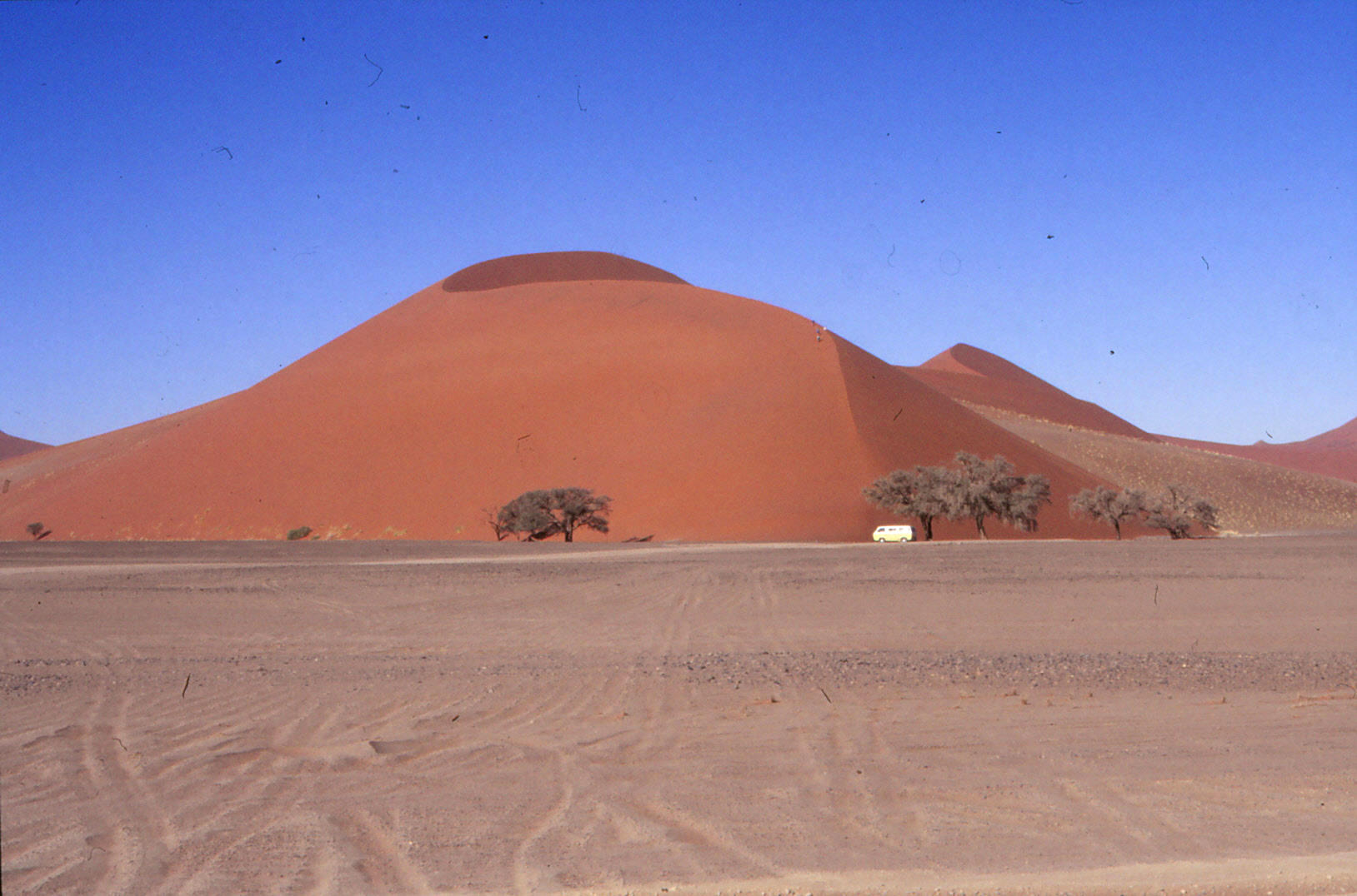 """Die Wüste lebt (und wenn auch nur ein Camper für """"Leben"""" sorgt"""