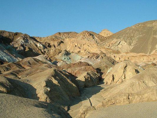 Die Wüste lebt ... zumindest in seinen Farben