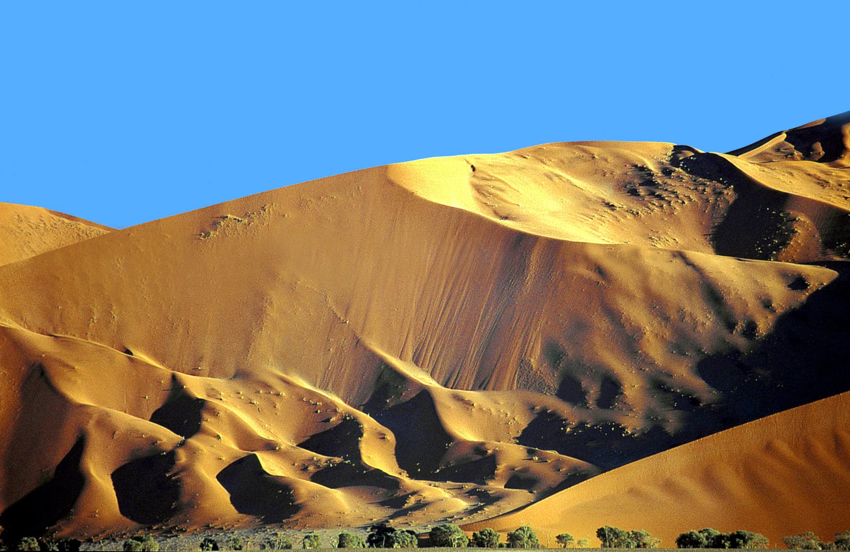 Die Wüste - Namibia