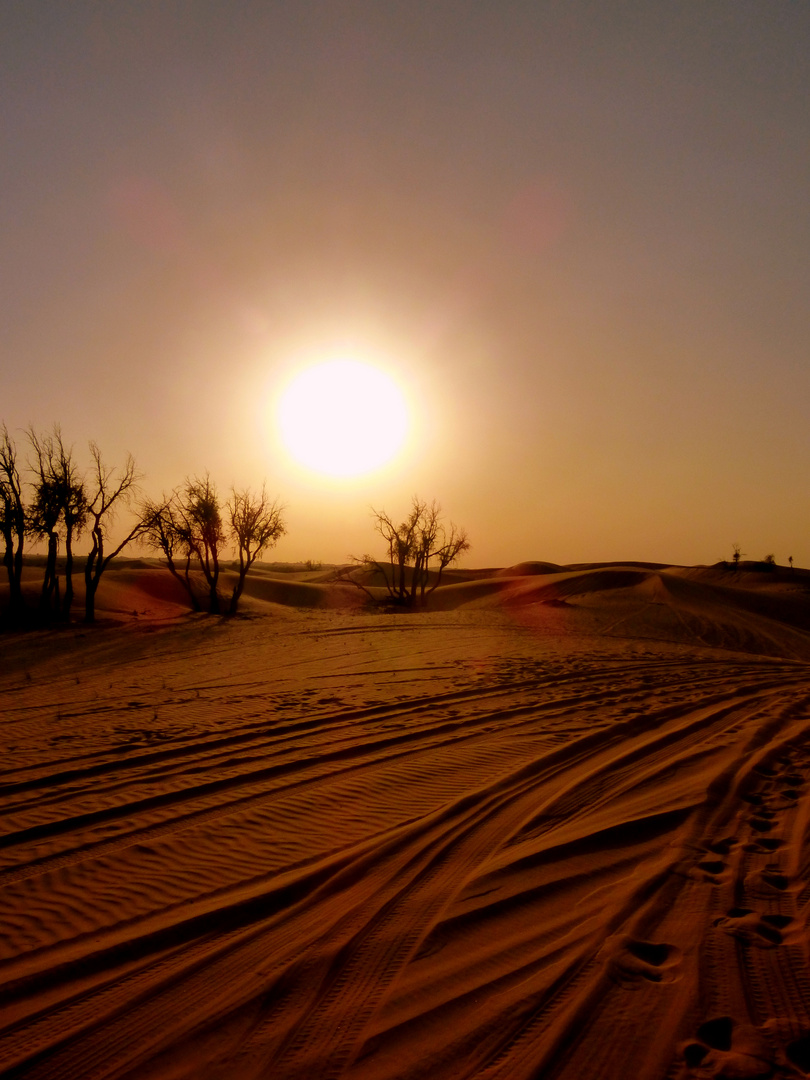 Die Wüste vor Abu Dhabi