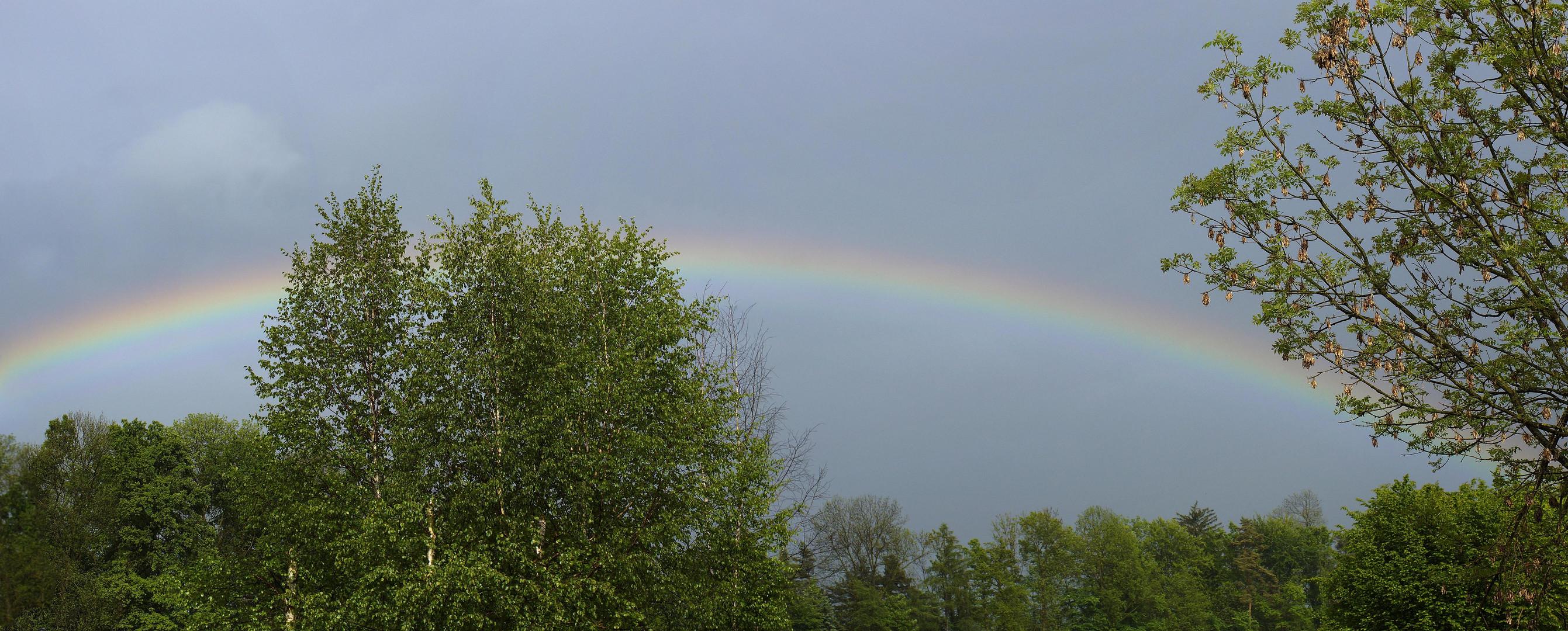 Die Zeit der Regenbogen