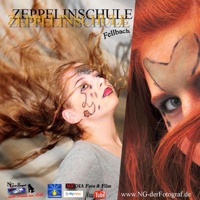 Die Zeppelinschule Fellbach