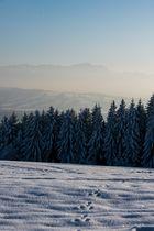 Die Zugspitze vom Hohenpeißenberg