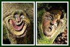 die zwei Gesichter des Waldes