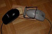 die zweite Maus bekommt den Käse