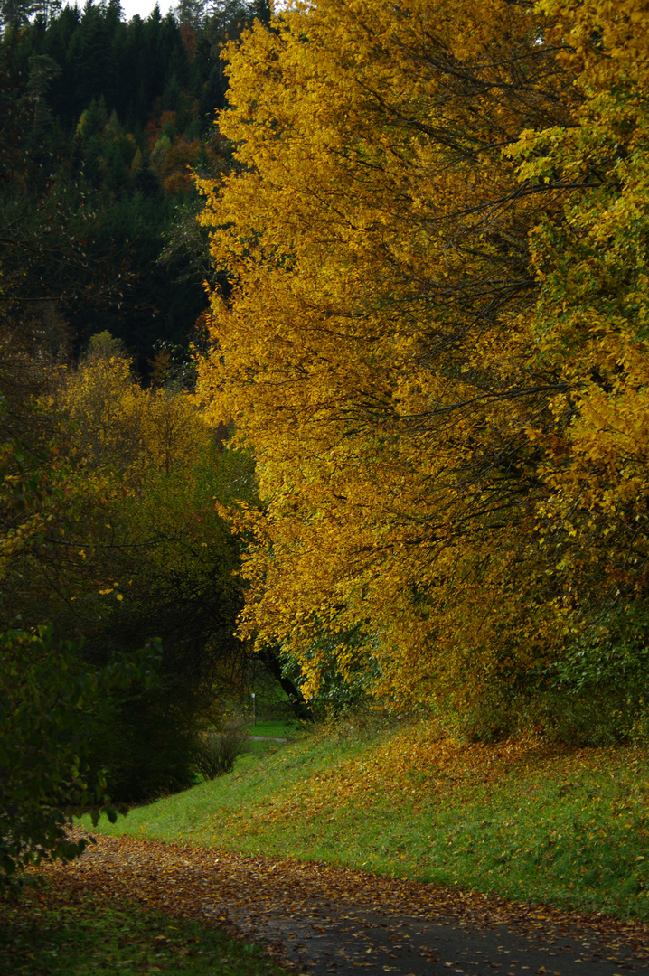 Diebachsee