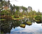 Dienstag ist Spiegeltag - -Japanischer Garten im Spiegelbild