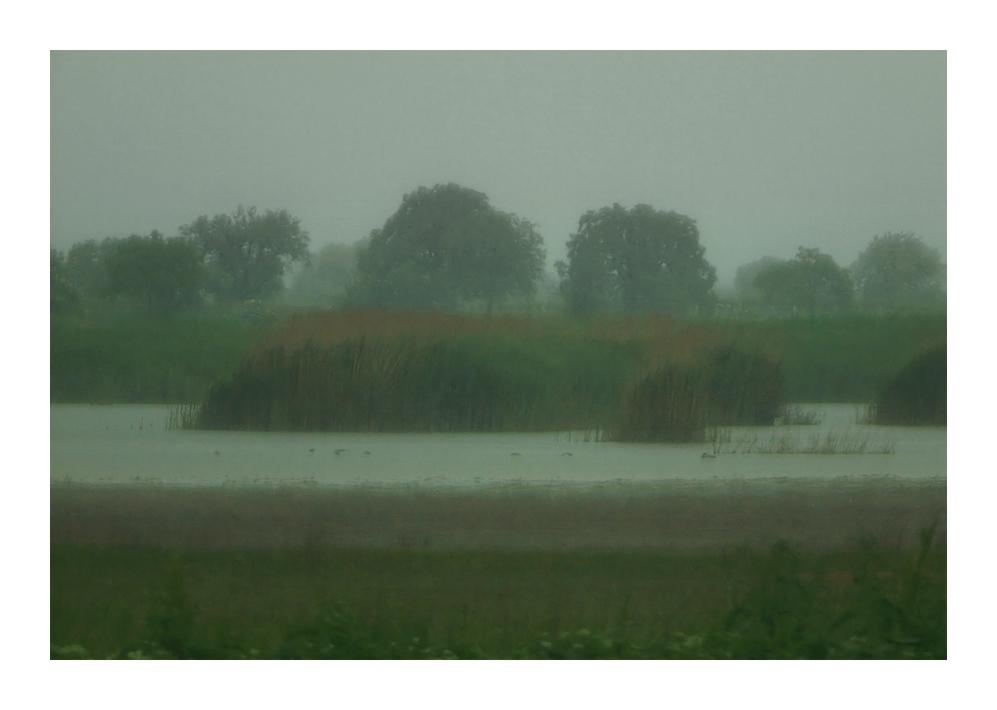 dienstag regenwetter in illmitz