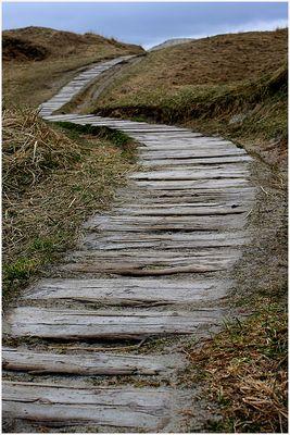 Dieser Weg...