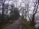 Dieser Weg