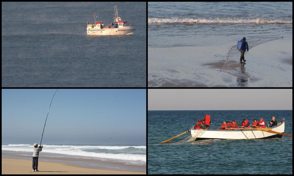 différentes façons de pêcher à l'océan !!!