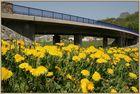 Dill-Brücke