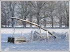 Dingdener Heide Januar 2009 (3)