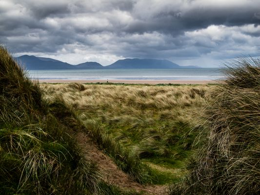 Dingle Bay, Strand bei Inch