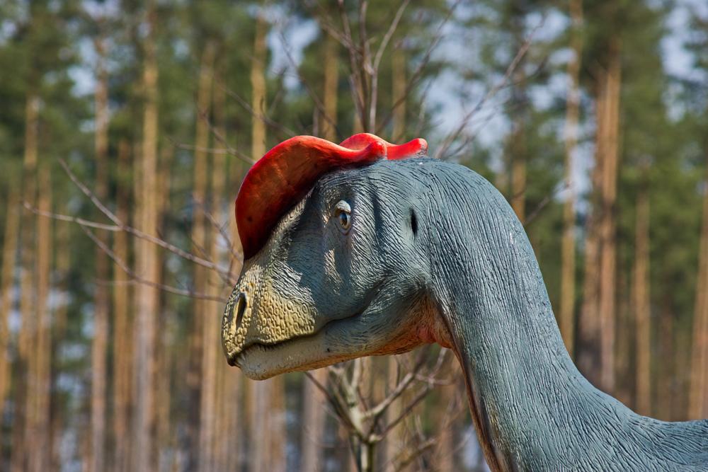 Dino mit Basecap