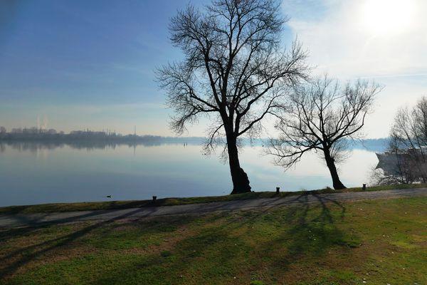 D'inverno, sui laghi di Mantova